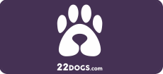22 Dogs